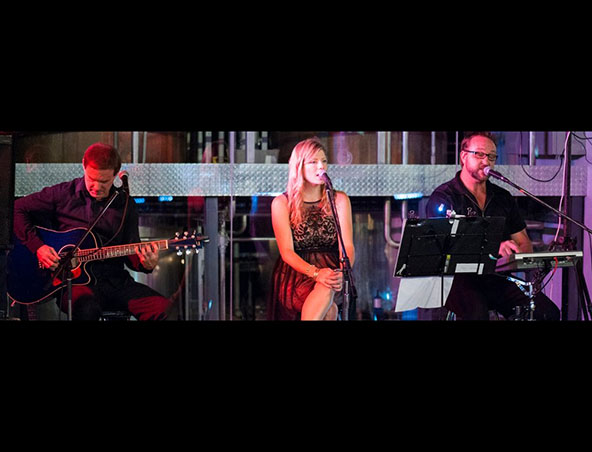 Shimmer Trio Perth - Cover Bands - Musicians Entertainers - Live Band