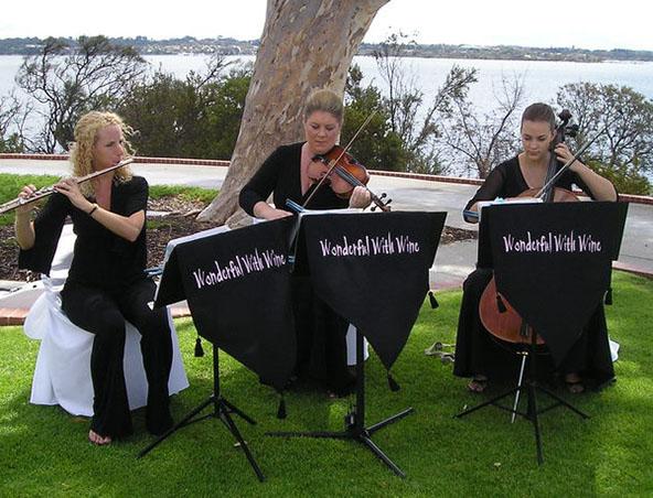 String Quartet Perth - Wonderful With Wine - Musicians