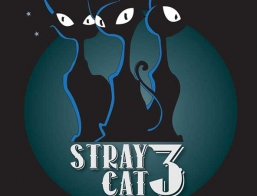 Stray Cat Three